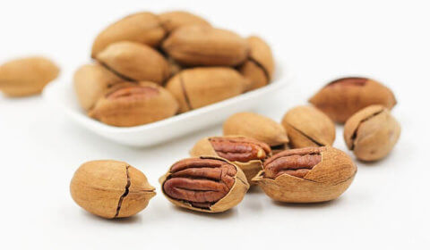 Pecan Recipes